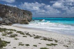 Baía da praia no fundo, Barbados Imagens de Stock Royalty Free