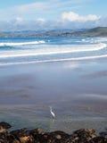 Baía da rocha de Morro Fotos de Stock Royalty Free
