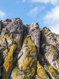 Baía da rocha de Morro Foto de Stock Royalty Free