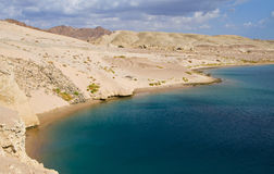 Baía da tartaruga em Egito Fotos de Stock