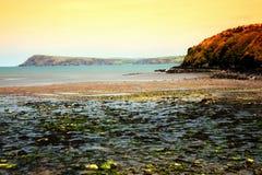 Baía de Fishguard, Pembrokeshire, Gales Imagem de Stock