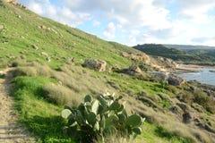 Baía de Gnejna  Imagens de Stock