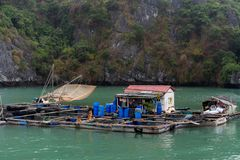 Baía de Halong em nuvens místicos Vila tradicional dos fishermens no mar do ther Atmoshpere místico na baía mundialmente famosa d fotos de stock