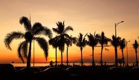 Baía de Manila fotografia de stock royalty free