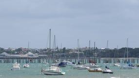 Baía de Okahu Imagens de Stock