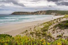 A baía de Pennington ajardina na maré baixa Ilha do canguru, Aus sul Foto de Stock