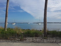 Baía de Sarasota fotografia de stock royalty free
