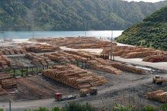 Baía de Shakespeare perto de Picton Nova Zelândia imagens de stock