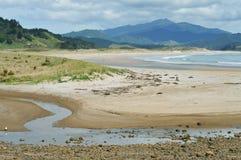 Baía de Waikawau na península de Coromandel Imagem de Stock Royalty Free