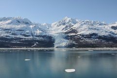 Baía de Yakutat Fotos de Stock