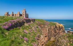 Baía Escócia Reino Unido de Cruden do castelo de Slains fotos de stock