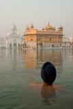 Bañista en el templo de oro Fotografía de archivo