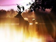 Baño de la mañana de los ciervos ilustración del vector