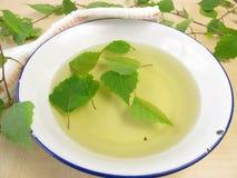 Baño de té con las hojas del abedul Foto de archivo libre de regalías