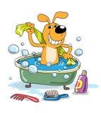 Baño de un perrito Fotografía de archivo libre de regalías