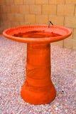 Baño del pájaro Fotografía de archivo libre de regalías