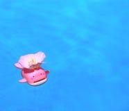 Baño divertido. Imagen de archivo libre de regalías