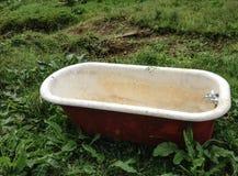 Baño en el salvaje fotografía de archivo