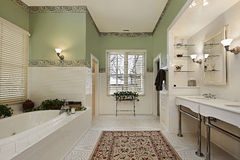Baño principal con las paredes verdes Foto de archivo