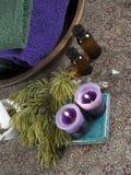 Baño verde y púrpura Imagen de archivo