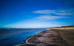 Bałtycka plaża w pogodnym zimnym dniu z szlamem i kiteboarder obrazy royalty free
