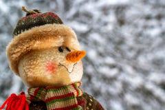 Bałwan na śniegu Zdjęcia Royalty Free