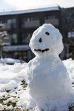 Bałwanu stojak na białym snowground Zdjęcia Stock