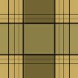 Ba à carreaux de modèle de plaid de texture de rétro tartan sans couture de textile Image libre de droits