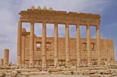 Ba'al寺庙的废墟在扇叶树头榈,叙利亚的 库存图片