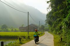 Ba Be Lakes / Vietnam, 04/11/2017: Motorbiking backpacker passing rice paddies and local houses on a road during sunrise in the royalty free stock photos