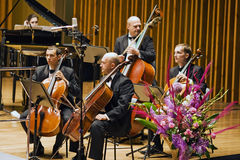Baß-Kapitel des Kammerorchesters Stockfoto