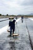 Group of saltworker carry salt with shoulder pole  Royalty Free Stock Images