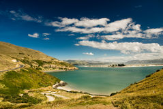 Baai in Dunedin Royalty-vrije Stock Foto's