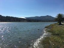 Baai, golven, berg, palm, mist en blauwe hemel royalty-vrije stock fotografie