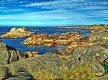 Baai van branden Tasmanige stock foto