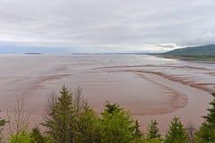 Baai van Fundy in eb, New Brunswick, Canada Stock Foto's