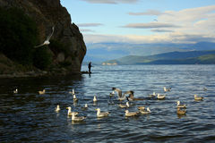 Baai van Meer Baikal Royalty-vrije Stock Foto's
