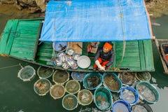 Baai Vietnam - Halong Royalty-vrije Stock Afbeelding