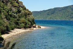 Baai waar de struik waterenrand ontmoet. Royalty-vrije Stock Fotografie
