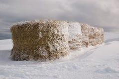 Baal van hooi op de sneeuw Stock Afbeeldingen