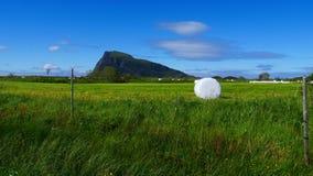 Baal van hooi in plastic folie, Noorwegen wordt verpakt dat royalty-vrije stock afbeeldingen