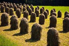 Baal van stro in de Tirolean Alpen stock foto's
