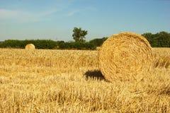 Baal van tarwe strows royalty-vrije stock afbeeldingen