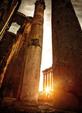 Baalbeck ruins in sunset Royalty Free Stock Photography