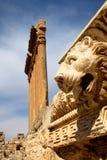 baalbek lebanon Royaltyfri Fotografi
