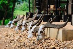 Baandam-Museum in ChiangRai, Thailand Stockbild