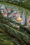 Bab寺庙在棕榈叶后的 库存照片