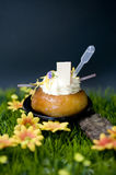 Baba au rhum Royalty Free Stock Photo