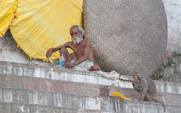 Baba and monkey. Holy man in holy city of  Varanasi, Uttar Pradesh, India Royalty Free Stock Photography