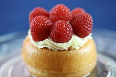 Baba Rum raspberry Dessert. Delicious Rum Baba Dessert topped with fresh cream and raspberry, blue background Royalty Free Stock Photo